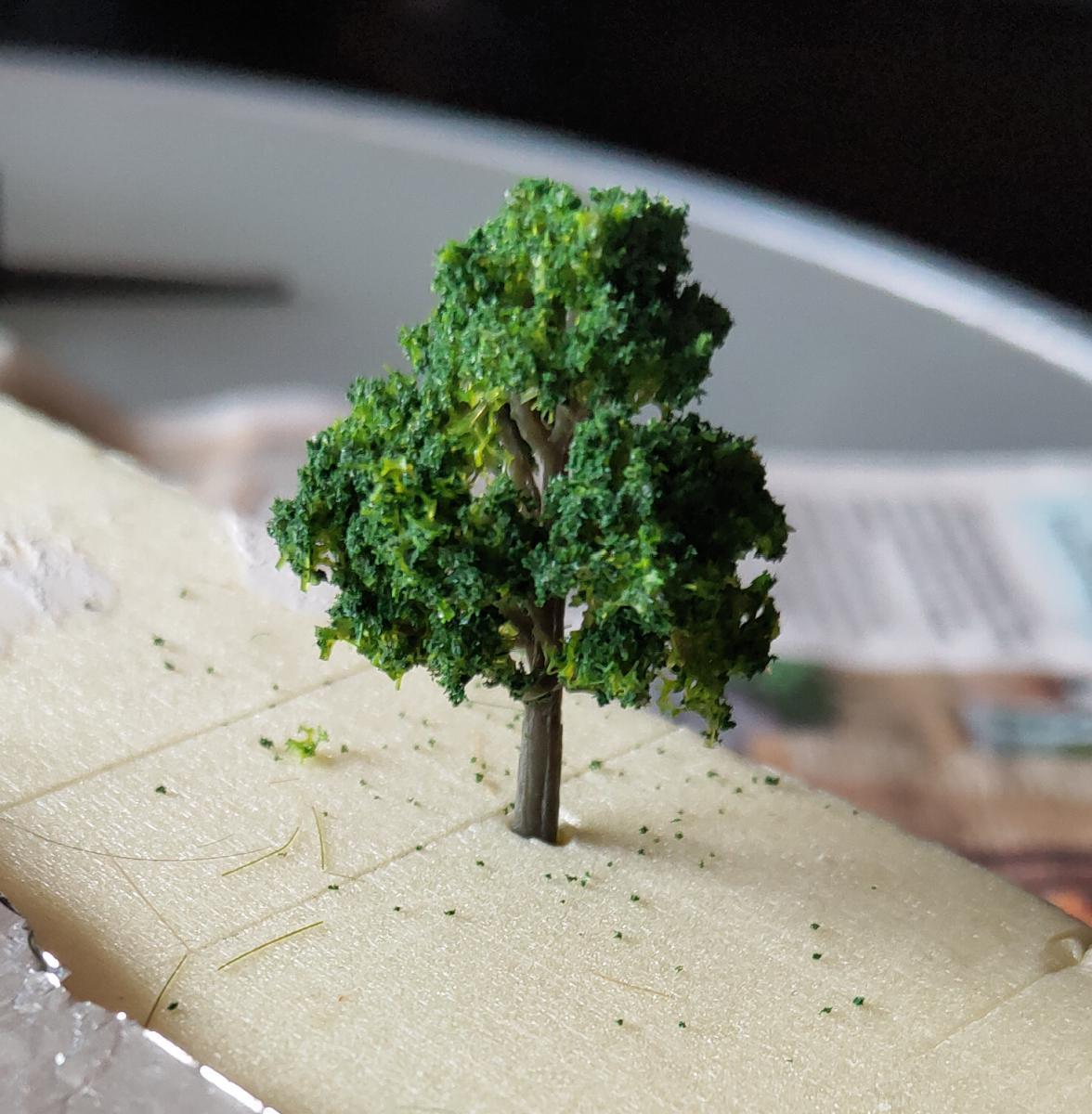Дерево в присыпке после сушки